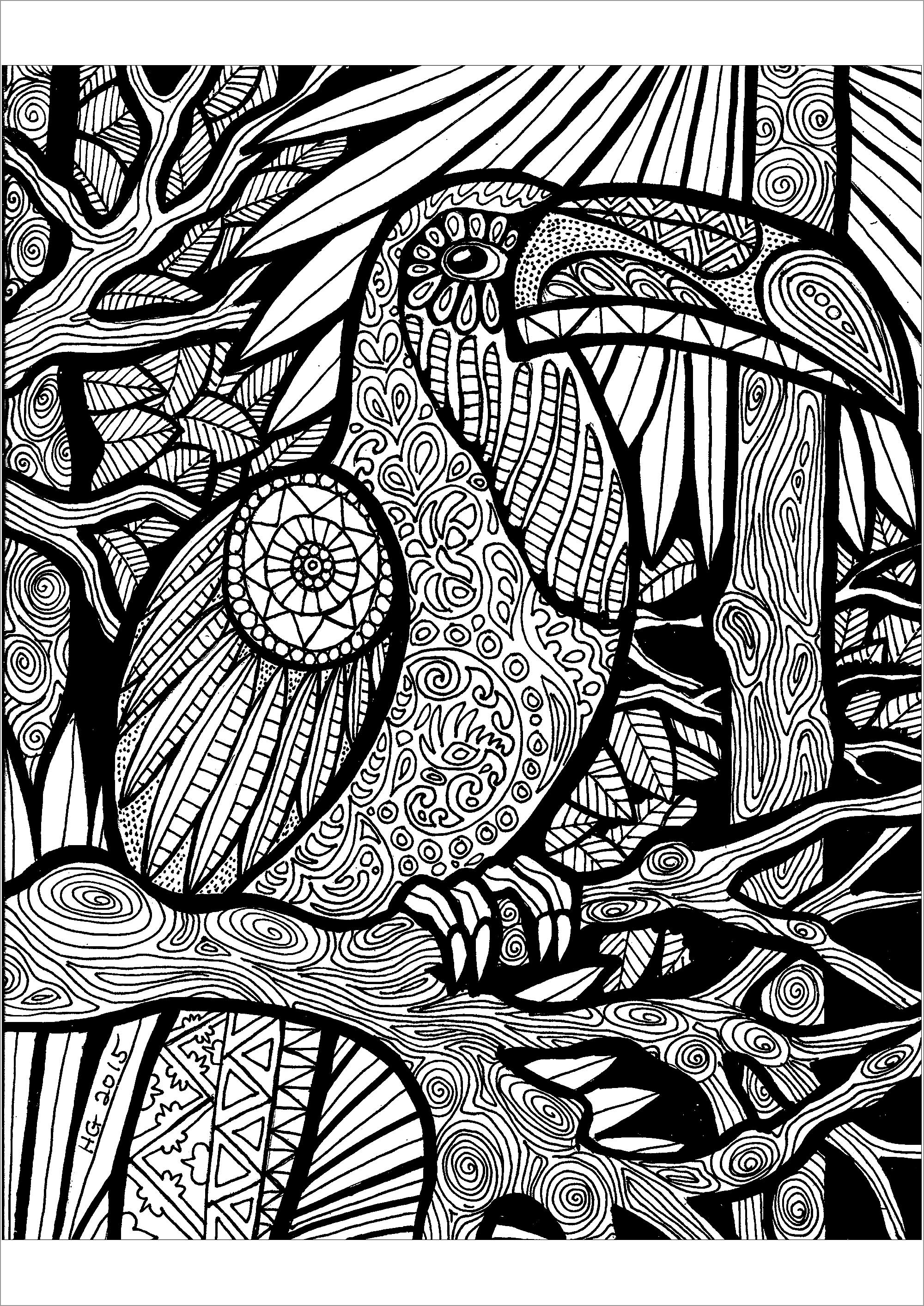 Zentangle toucan Art Adult Coloring Pages